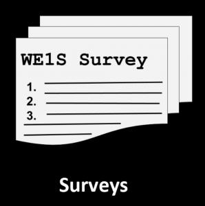Icon representing WE1S Surveys